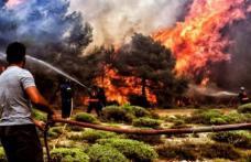 Avertisment pentru românii care pleacă în vacanță în Grecia. Risc ridicat de incendii din cauza caniculei și vântului!
