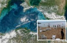 """Fenomen ciudat petrecut în Marea Neagră. Turiștii au ieșit rapid din apă: """"E anormal. Nu putem sta acolo. N-am mai întâlnit asta!"""""""