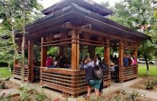 Vara asta se cântă Folk în parcul Cholet din Dorohoi - VIDEO