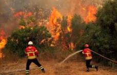Avertizări de călătorie pentru Grecia și Portugalia: Risc de incendii și temperaturi ridicate