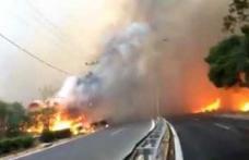 MAE atenționează românii care merg în Grecia că de azi există risc ridicat de incendii de vegetație, în anumite zone