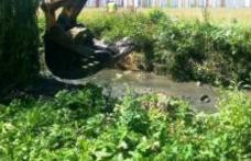 Primăria Dorohoi, a demarat procedurile pentru atribuirea contractului de curățarea albiei pârâului Dorohoi