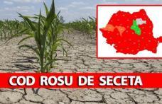 COD ROȘU de secetă în România! ANM anunță caniculă severă și fenomene extreme