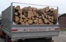 Material lemnos confiscat și cinci mii de lei amendă pentru un tânăr din Dorohoi
