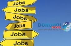 453 locuri de muncă vacante în Spaţiul Economic European