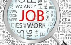 Aproape 700 de locuri de muncă disponibile în județul Botoșani. Vezi detalii!