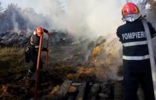 Incendiu Carasa: 40 de tone de furaje distruse. Vezi cauza izbucnirii!
