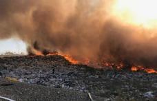Mobilizare în forță: Incendiu URIAȘ la groapa de gunoi din comuna Stăuceni - FOTO