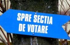 Alegeri prezidențiale 2019: Vezi care este delimitarea și numerotarea secțiilor de votare din municipiul Dorohoi