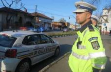 Mașină burdușită cu pilote fără documente legale depistată în trafic. Șoferul a rămas fără marfă și amendat pentru comerţ illicit