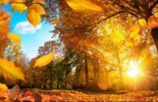 E vară în noiembrie. Cât mai ține căldură și când vine totuși gerul