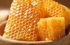 Care sunt beneficiile fagurelui de miere