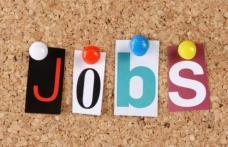 4.519 persoane angajate prin intermediul AJOFM BOTOȘANI