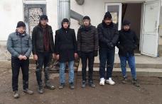 Cetățeni turci depistați de polițiștii de frontieră botoșăneni la frontiera cu Republica Moldova