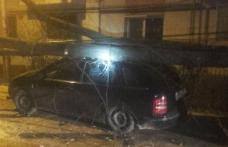 Ghinion pentru trei botoșăneni! Un copac a căzut peste mașinile lor - FOTO