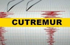 Cutremur în Vrancea în prima oră din 2020. Ce magnitudine a avut
