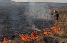Incendiu de vegetație la marginea Botoșaniului. Focul a ajuns la casele din apropiere și lângă un fost depozit - FOTO