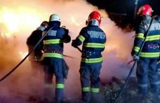139 de misiuni a pompierilor botoşăneni, în ultima săptămână