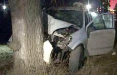 S-a izbit cu mașina într-un copac și a plecat singur la spital. Vezi ce alcoolemie avea