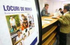 616 locuri de muncă vacante în Spaţiul Economic European