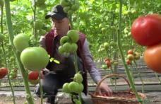 """Lucian Trufin: """"Cultivatorii de tomate din Botoșani sunt duși cu zăhărelu' de Guvernul liberal"""""""