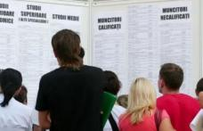 373 persoane angajate în luna ianuarie prin intermediul AJOFM BOTOȘANI