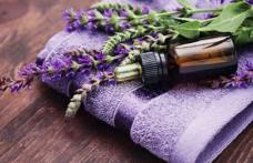 Proprietăți terapeutice pe care le deține lavanda