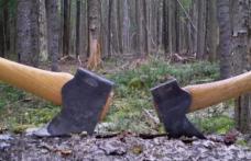 Percheziţie la locuinţa unui bărbat din comuna Vorniceni, cercetat pentru furt și tăiere fără drept de arbori