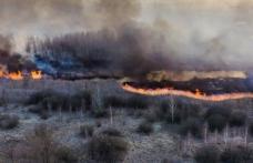 Incendiu în zona radioactivă de la Cernobîl! ANM: Norul de fum nu va ajunge în România