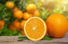 Portocalele, fructe excelente pentru sănătate, dar nu atunci când sunt consumate în exces