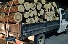Lemne confiscate și șofer amendat la Mihăileni