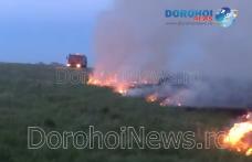 Incendiu de vegetație izbucnit la marginea municipiului Dorohoi - FOTO