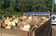Transport ilegal de lemne sancționat de polițiști