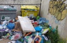 Botoșaniul merită mai mult decât pot oferi aleșii din fruntea Municipiului și a Consiliului Local! - FOTO