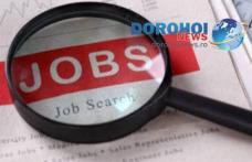 Peste o mie de locuri de muncă oferite de angenti economici pentru judetul Botoșani în această săptămână