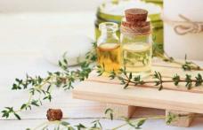 Cimbru și mierea de mare ajutor în problemele respiratorii