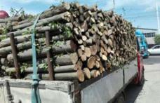 Amendă de 3000 de lei și material lemnos confiscat