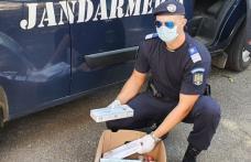 182 de pachete de țigări confiscate de jandarmii botoșăneni