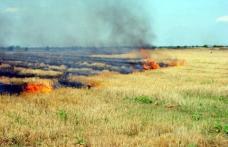 Bătrân din Suharău găsit carbonizat pe câmp