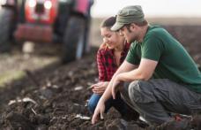 Tinerii fermieri vor putea concesiona de la stat 50 de hectare de teren