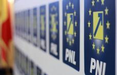 Doina Federovici și liderii PSD nu sunt în stare să vină cu propriul program pentru Botoșani !
