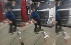 Cabină de camion căptușită cu țigări de contrabandă descoperită în Vama Stânca – FOTO