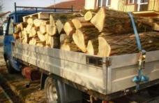 Transport ilegal de lemne depistat de polițiști la Pomârla