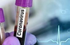 Subprefecta de Dorohoi în carantină din cauza virusului COVID 19