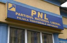 PNL-iștii botoșăneni și-au stabilit lista candidaților pentru Senat și Camera Deputaților