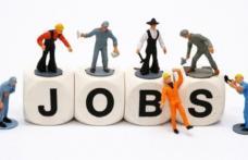 68 locuri de muncă vacante în rețeaua EURES