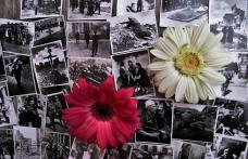 Un gând înalt, însemn de respect pentru Armata Română și Veteranilor români - VIDEO