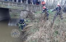 Descoperire macabră! Bărbat de 41 de ani găsit decedat într-un pârâu