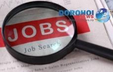 721 locuri de muncă vacante în județul Botoșani în această săptămână