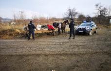 Amendă de 3000 de lei pentru un bărbat din Pomârla care a aruncat gunoiul în câmp